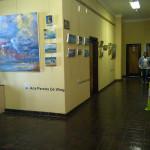 The Witness Hilton Art Festival