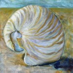 Spiral Shell, 2012, Oil on Canvas, 40 x 40cm